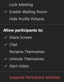 Example of the options available after selecting the Security icon on the meeting toolbar.