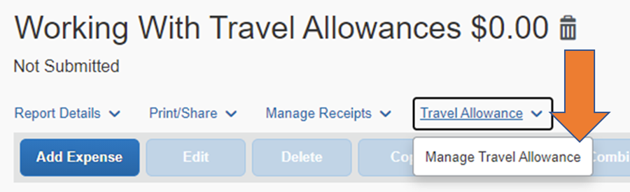 Screen Capture of Concur Expense Report indicating the Travel Allowance drop-down menu location.